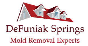 DeFuniak Springs Mold Removal Experts